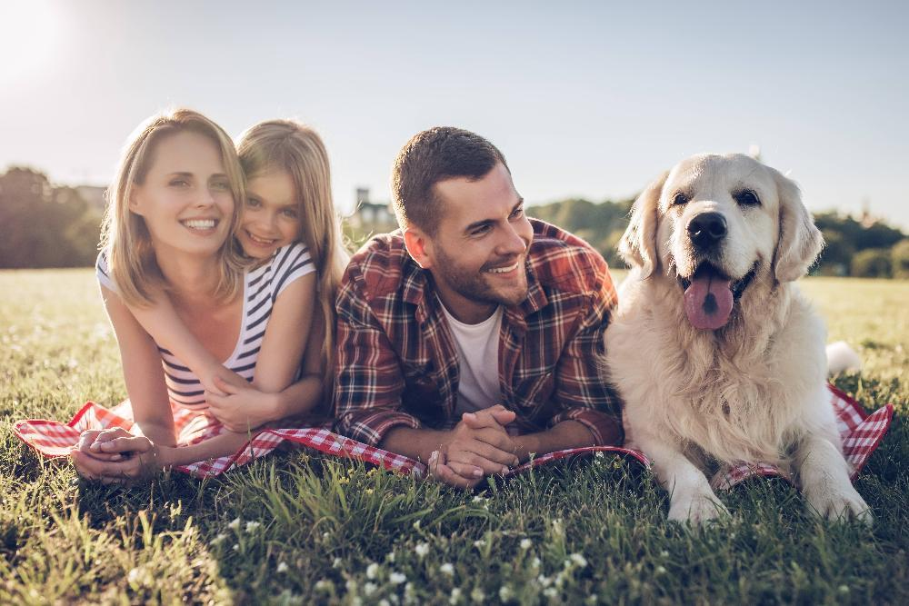 young family outside in a field with dog l family dentist white bear lake, mn